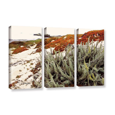 Brushstone Red Ice On Beach III 3-pc. Gallery Wrapped Canvas Wall Art