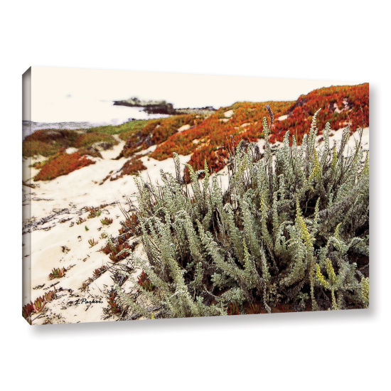 Brushstone Red Ice On Beach III Gallery Wrapped Canvas Wall Art