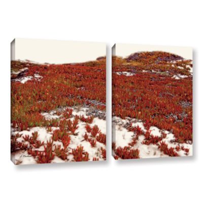 Brushstone Red Ice On Beach I 2-pc. Gallery Wrapped Canvas Wall Art