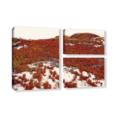 Brushstone Red Ice On Beach I 3-pc. Flag Gallery Wrapped Canvas Wall Art
