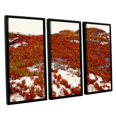 Brushstone Red Ice On Beach I 3-pc. Floater FramedCanvas Wall Art