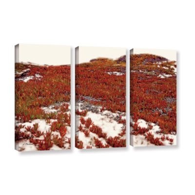 Brushstone Red Ice On Beach I 3-pc. Gallery Wrapped Canvas Wall Art