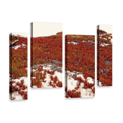Brushstone Red Ice On Beach I 4-pc. Gallery Wrapped Staggered Canvas Wall Art