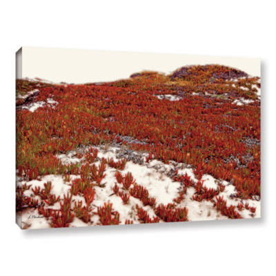 Brushstone Red Ice On Beach I Gallery Wrapped Canvas Wall Art