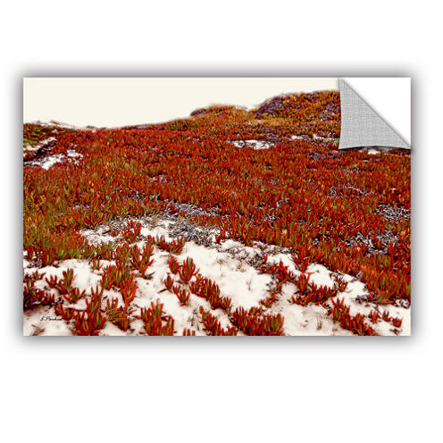 Brushstone Red Ice On Beach I Removable Wall Decal