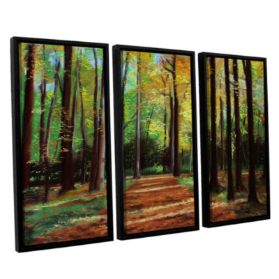 Brushstone Poland Woods 3-pc. Floater Framed Canvas Wall Art