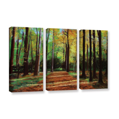 Brushstone Poland Woods 3-pc. Gallery Wrapped Canvas Wall Art