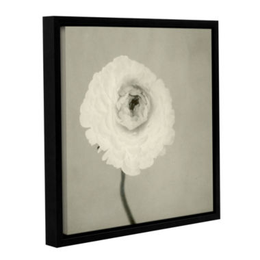 Brushstone Ranunculus Gallery Wrapped Floater-Framed Canvas Wall Art
