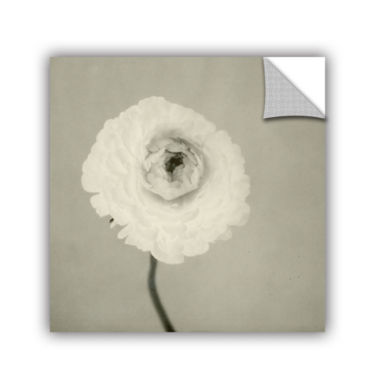 Brushstone Ranunculus Removable Wall Decal