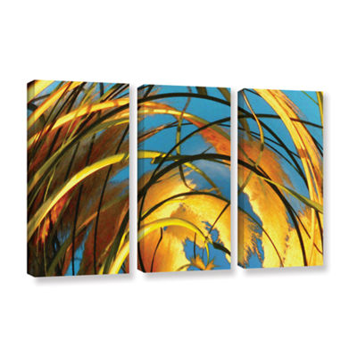 Brushstone Polar Pampas 3-pc. Gallery Wrapped Canvas Wall Art