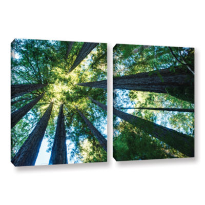 Brushstone Redwood Fusion 2-pc. Gallery Wrapped Canvas Wall Art