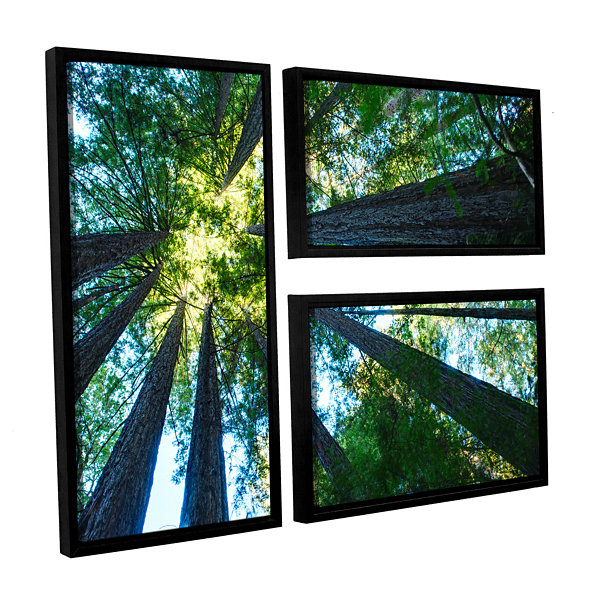 Brushstone Redwood Fusion 3-pc. Flag Floater Framed Canvas Wall Art