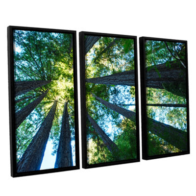Brushstone Redwood Fusion 3-pc. Floater Framed Canvas Wall Art