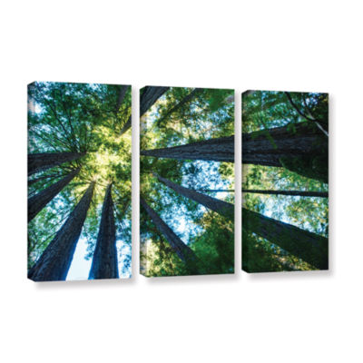 Brushstone Redwood Fusion 3-pc. Gallery Wrapped Canvas Wall Art