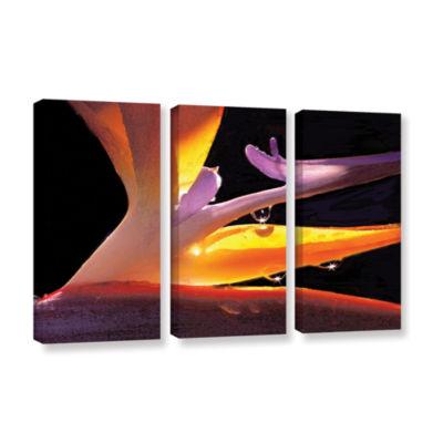 Brushstone Rain Bird 3-pc. Gallery Wrapped CanvasWall Art