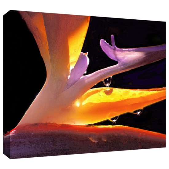 Brushstone Rain Bird Gallery Wrapped Canvas Wall Art
