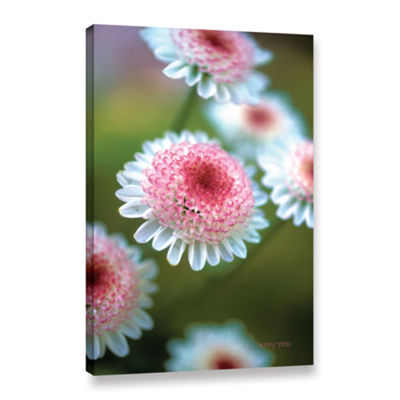 Brushstone Pincushion Flowers Gallery Wrapped Canvas Wall Art