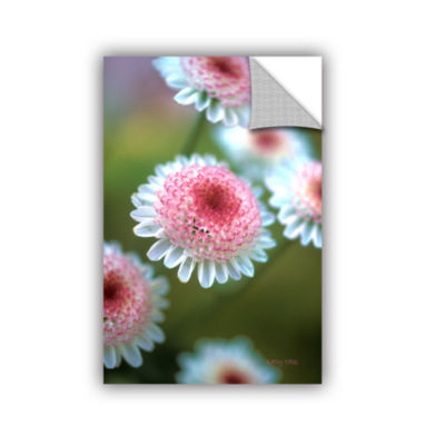 Brushstone Pincushion Flowers Removable Wall Decal