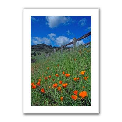 Brushstone Poppies And The Fence Canvas Wall Art