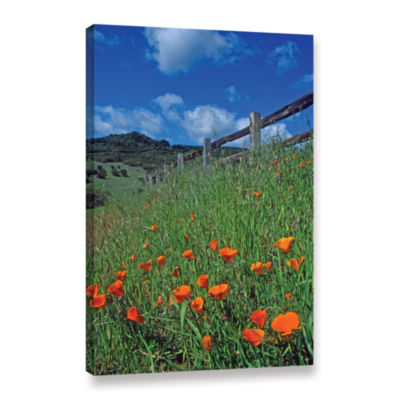Brushstone Poppies And The Fence Gallery Wrapped Canvas Wall Art