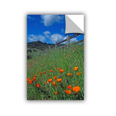 Brushstone Poppies And The Fence Removable Wall Decal