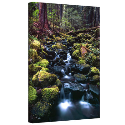 Brushstone Rain Forest Morning Gallery Wrapped Canvas Wall Art