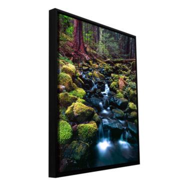Brushstone Rain Forest Morning Gallery Wrapped Floater-Framed Canvas Wall Art