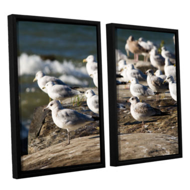 Brushstone Pigeons 2-pc. Floater Framed Canvas Wall Art