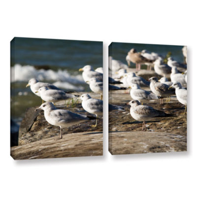 Brushstone Pigeons 2-pc. Gallery Wrapped Canvas Wall Art