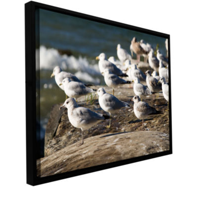Brushstone Pigeons Gallery Wrapped Floater-FramedCanvas Wall Art