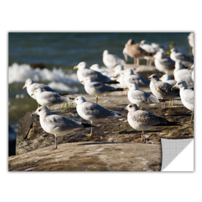 Brushstone Pigeons Removable Wall Decal
