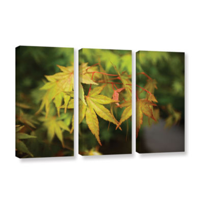 Brushstone Portland Japanese Garden 4 3-pc. Gallery Wrapped Canvas Wall Art