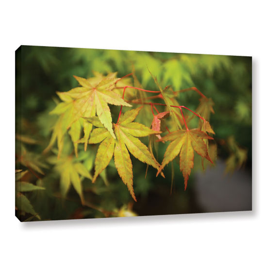 Brushstone Portland Japanese Garden 4 Gallery Wrapped Canvas Wall Art
