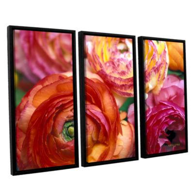 Brushstone Ranunculus Close Up 3-pc. Floater Framed Canvas Wall Art