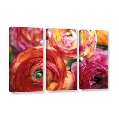 Brushstone Ranunculus Close Up 3-pc. Gallery Wrapped Canvas Wall Art
