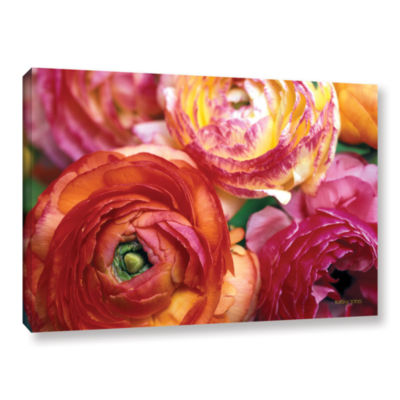 Brushstone Ranunculus Close Up Gallery Wrapped Canvas Wall Art