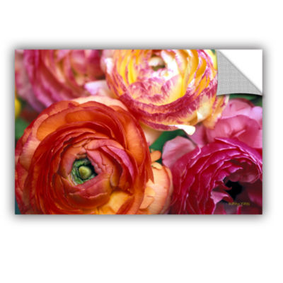 Brushstone Ranunculus Close Up Removable Wall Decal