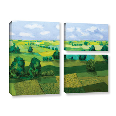 Brushstone Minnesota Fields 3-pc. Flag Gallery Wrapped Canvas Wall Art
