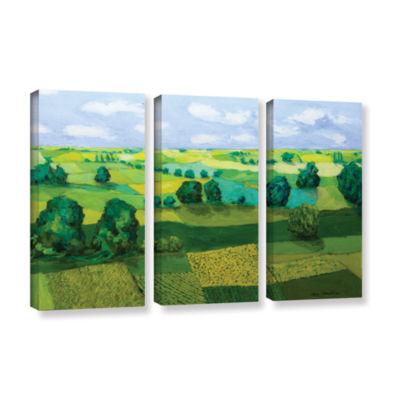 Brushstone Minnesota Fields 3-pc. Gallery WrappedCanvas Wall Art