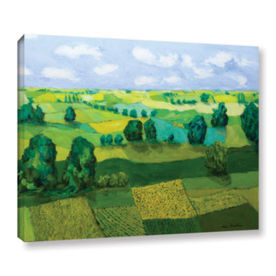 Brushstone Minnesota Fields Gallery Wrapped CanvasWall Art