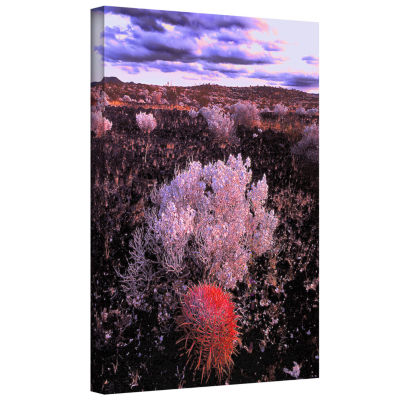 Brushstone Mojave Desert Dusk Gallery Wrapped Canvas Wall Art
