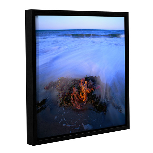 Brushstone Morning Sea Stars Gallery Wrapped Floater-Framed Canvas Wall Art
