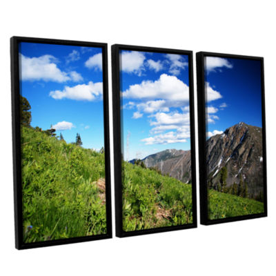 Brushstone Mountain Meadow 3-pc. Floater Framed Canvas Wall Art