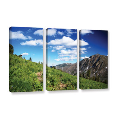 Brushstone Mountain Meadow 3-pc. Gallery Wrapped Canvas Wall Art