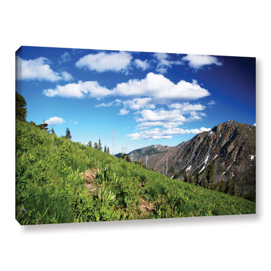 Brushstone Mountain Meadow Gallery Wrapped CanvasWall Art