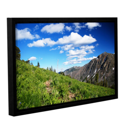 Brushstone Mountain Meadow Gallery Wrapped Floater-Framed Canvas Wall Art