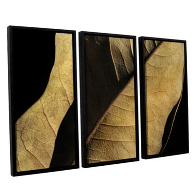 Brushstone Natural Selection (Leaf) 3-pc. FloaterFramed Canvas Wall Art