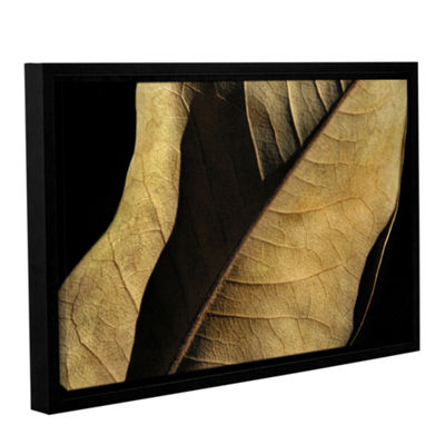 Brushstone Natural Selection (Leaf) Gallery Wrapped Floater-Framed Canvas Wall Art