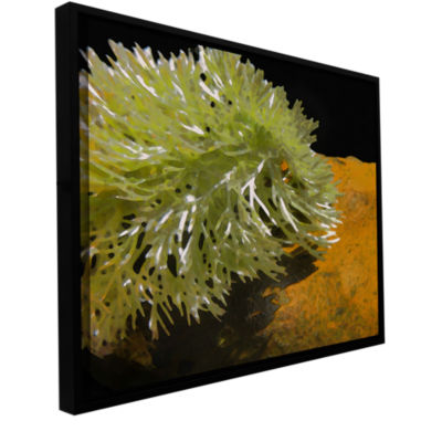 Brushstone Natural Selection Gallery Wrapped Floater-Framed Canvas Wall Art