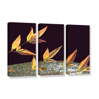 Brushstone Natural World (Fall) 3-pc. Gallery Wrapped Canvas Wall Art